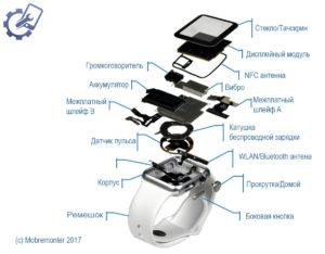 Apple_Watch_razbor