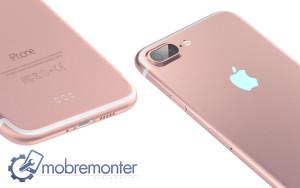 Ремонт iphone 7: особенности от mobremonter.ru